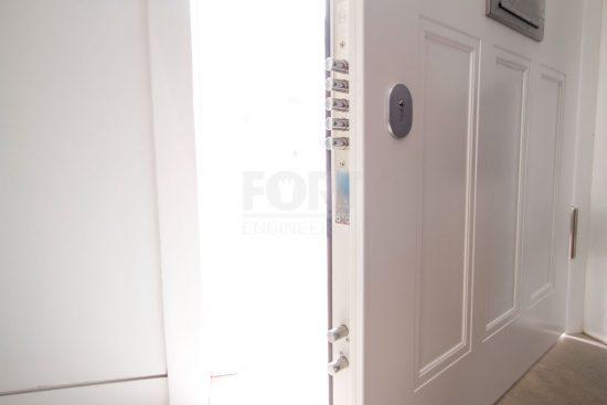 Fort Security Doors 23